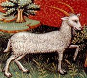 Ascendent Capricorn