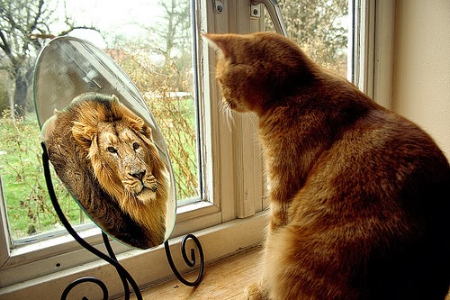 Zodiile și inconștientul individual: Leu