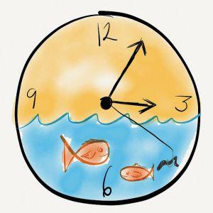 Când Peștii învață Timpul