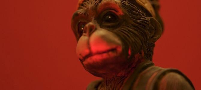 Anul Maimuţei de foc – semnificaţii şi perspective