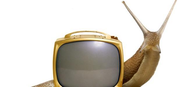Slow TV – emisiunea preferată a unei națiuni Gemeni
