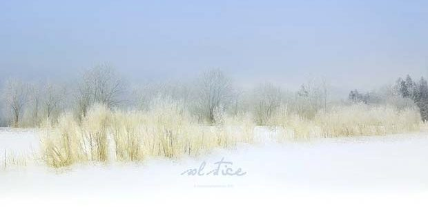 Solstiţiul de iarnă 2019 – semnificaţii şi influenţe